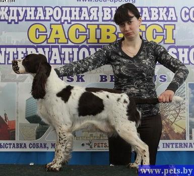 Международные выставки России и Беларуси - Страница 2 158720-edd91-29716925-