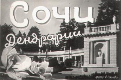 Сочи. Дендрарий. 1954.