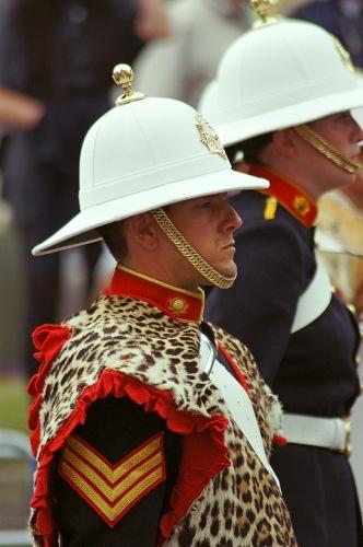 Свадьба принца Уильяма и Кейт Миддлтон. Витязь в леопардовой шкуре.
