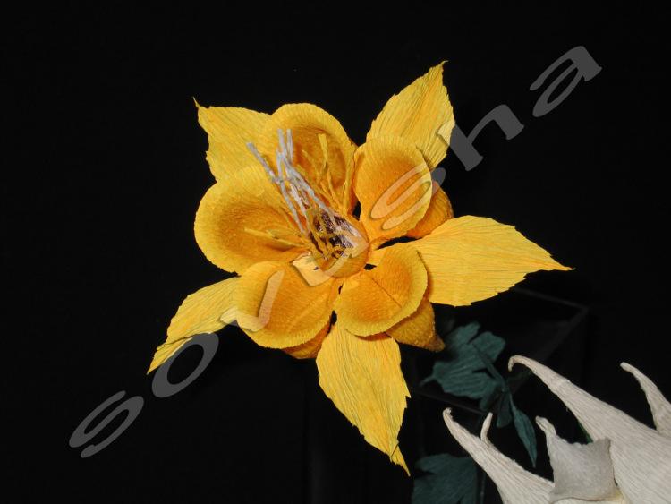 http://data11.gallery.ru/albums/gallery/249557--29083837-m750x740.jpg