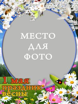 52025-5af3b-31179051-400.jpg