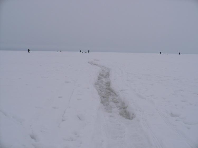 28 февраля 2010 г. Комарово.   63542-2886b-29337108-m750x740