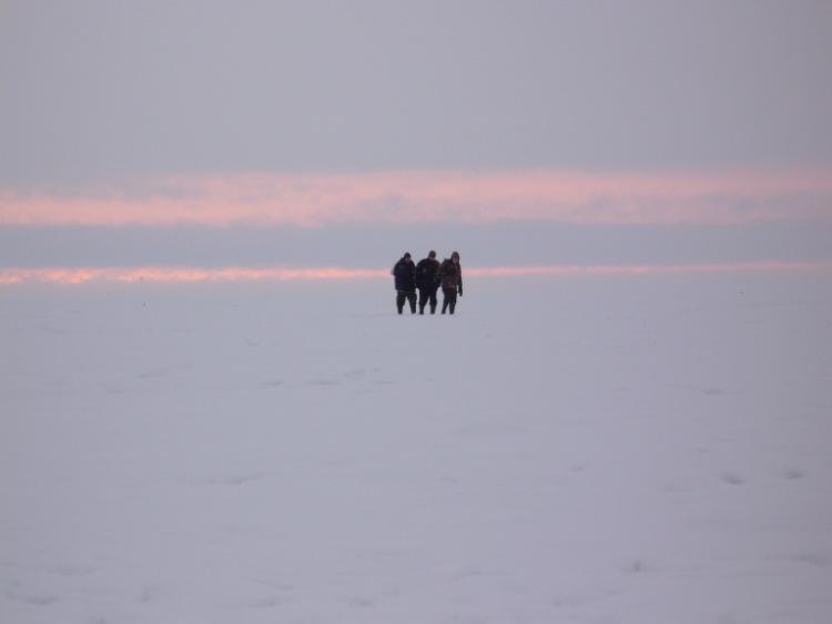 28 февраля 2010 г. Комарово.   63542-b45c3-29337158-m750x740