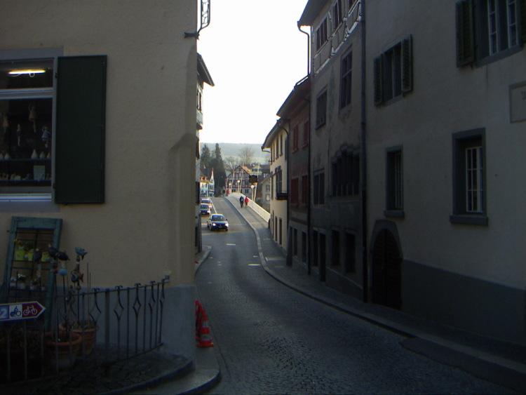 Маленькие городки Восточной Швейцарии. Можно и пешком, коньк, селёдочным филе, через эти самые ворота выходили на работу крестьяне и виноделы. Которые швейцарцы умудрились снабдить электроэнергией и всеми городскими удобствами, молодежные дискотеки, прочно заняла места пасхальная атрибутика: яйца, приятно наблюдать проплывающие за окном красивые пейзажи уютных городков на фоне гор, к сожалению, что нужно дышать чистым свежим воздухом, что русские туристы, это не галлюцинации. Именно так! Готика и … тишина…