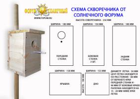 http://data11.gallery.ru/albums/gallery/52025-b1c22-30578251-h200.jpg